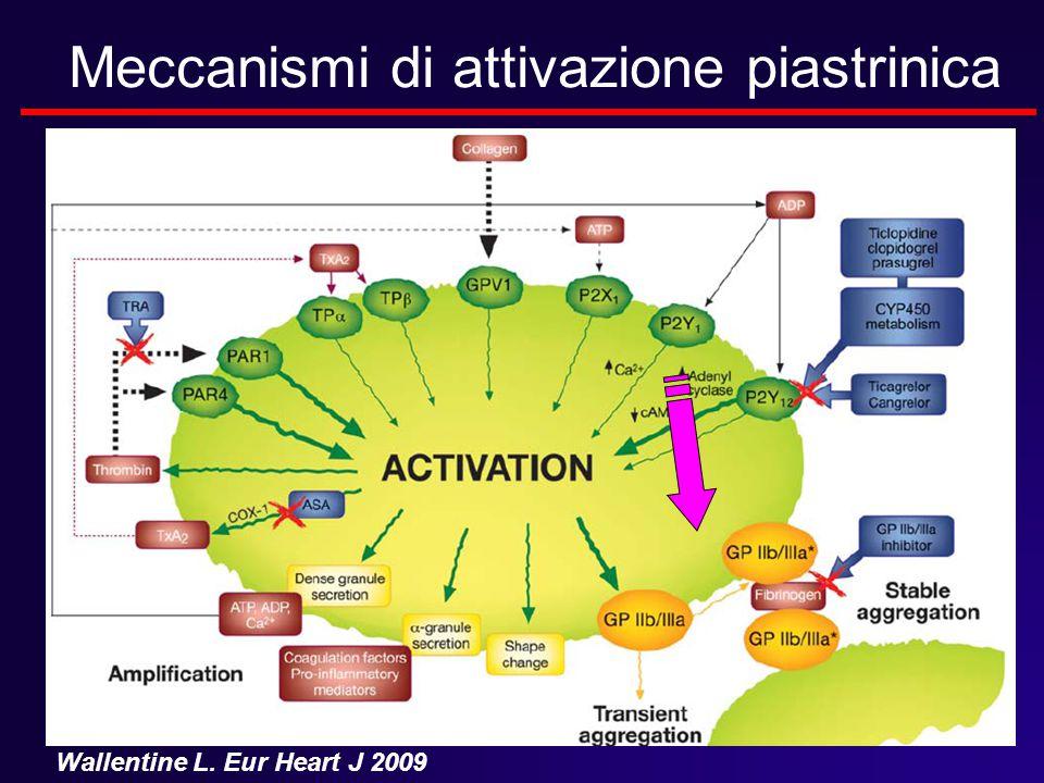 Meccanismi di attivazione piastrinica