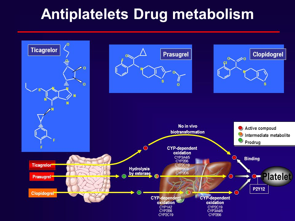 Antiplatelets Drug metabolism