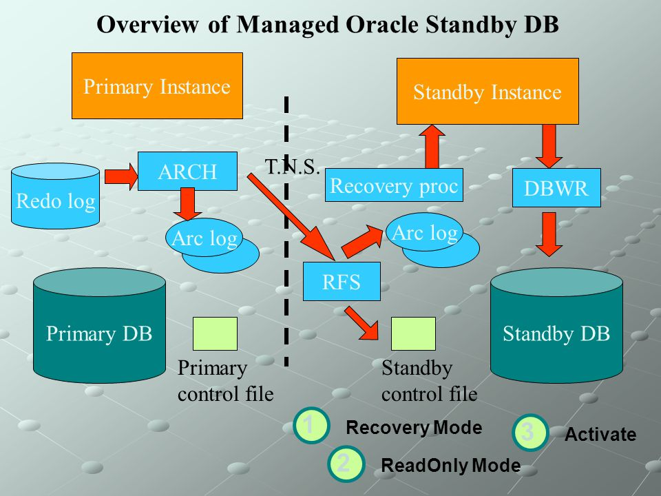 Overview of Managed Oracle Standby DB