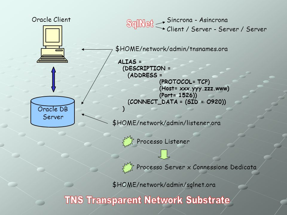 TNS Transparent Network Substrate