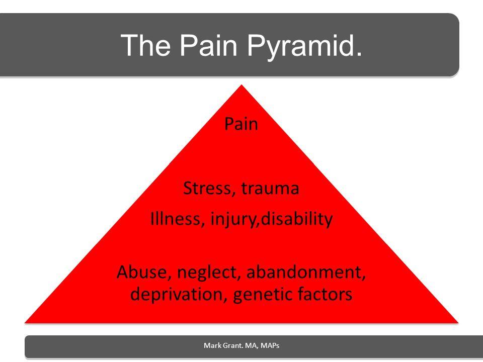 The Pain Pyramid. Pain Stress, trauma Illness, injury,disability