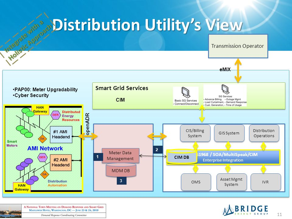Distribution Utility's View