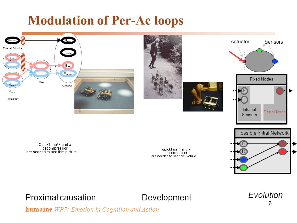 Modulation of Per-Ac loops