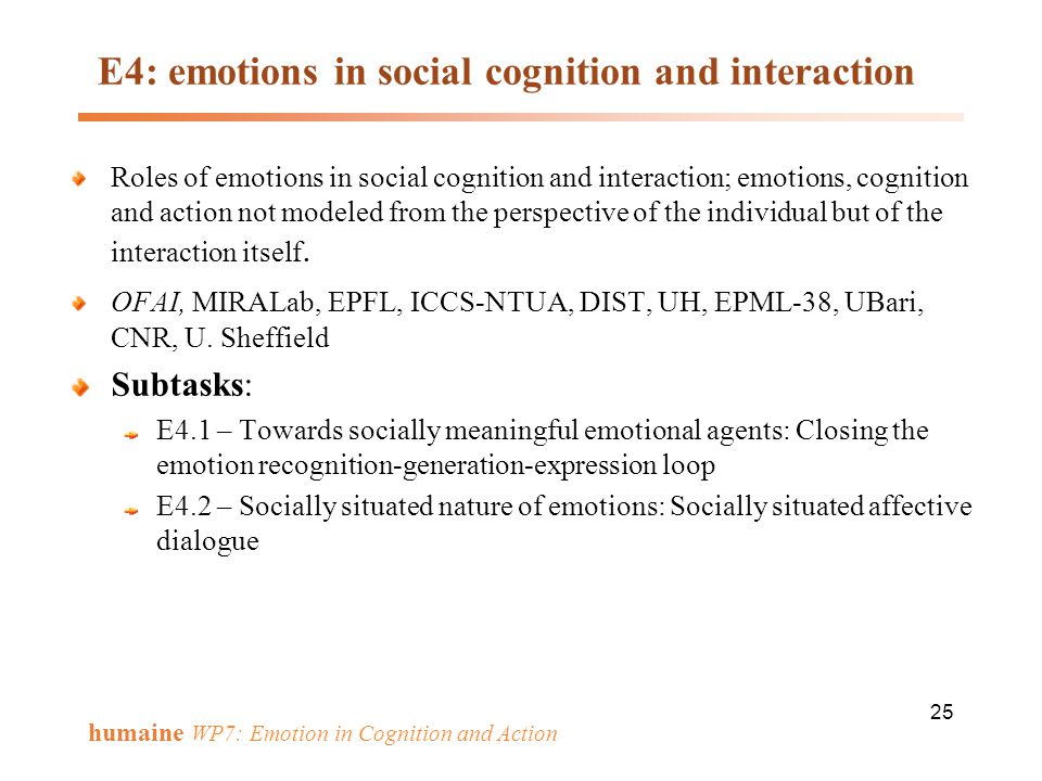 E4: emotions in social cognition and interaction