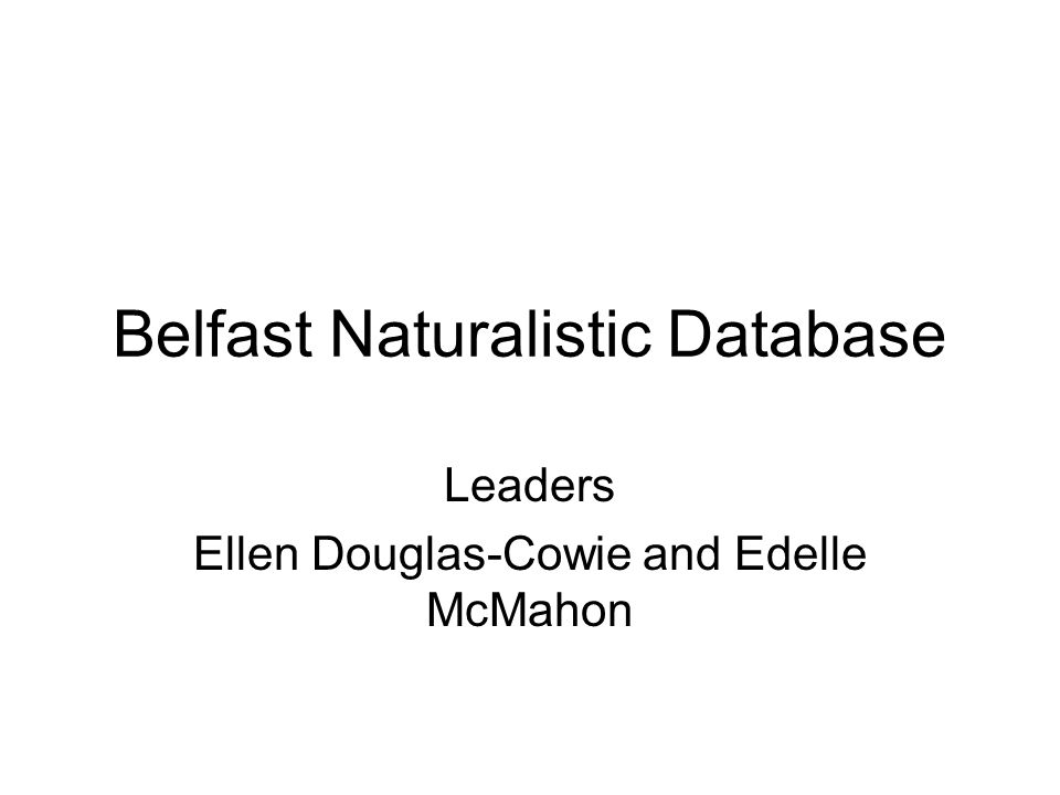 Belfast Naturalistic Database