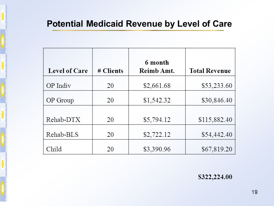 Potential Medicaid Revenue by Level of Care
