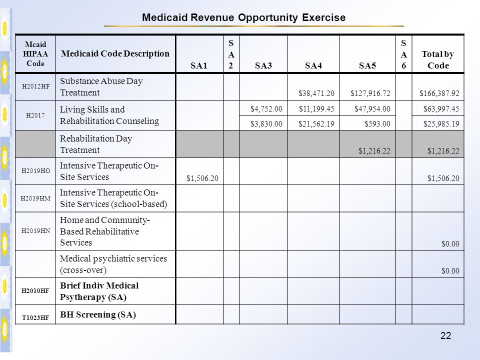Medicaid Revenue Opportunity Exercise Medicaid Code Description