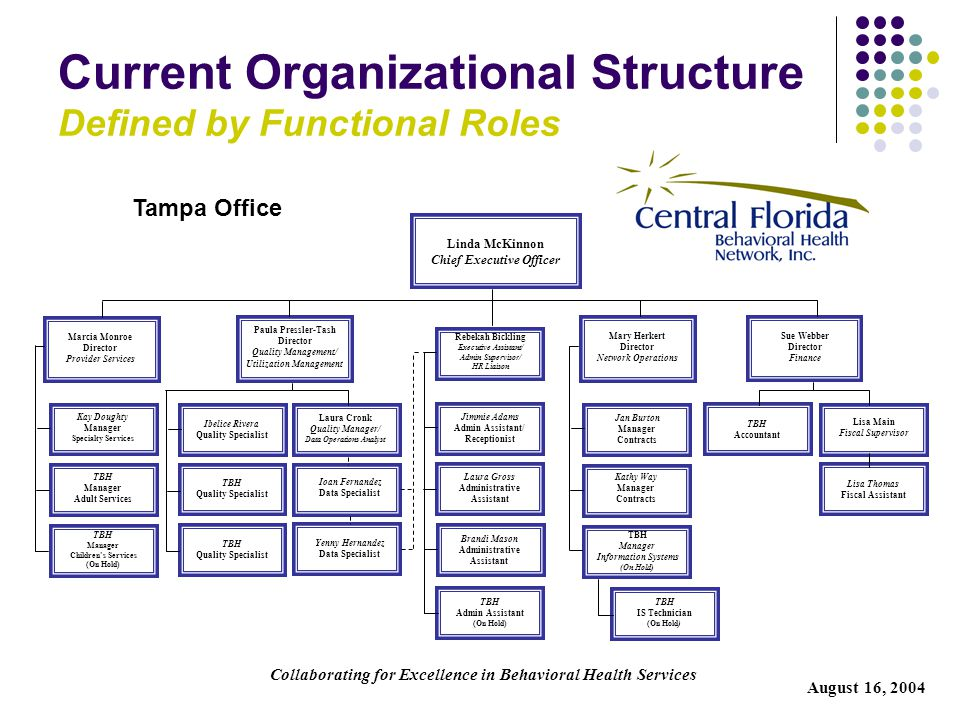 Current Organizational Structure Defined by Functional Roles