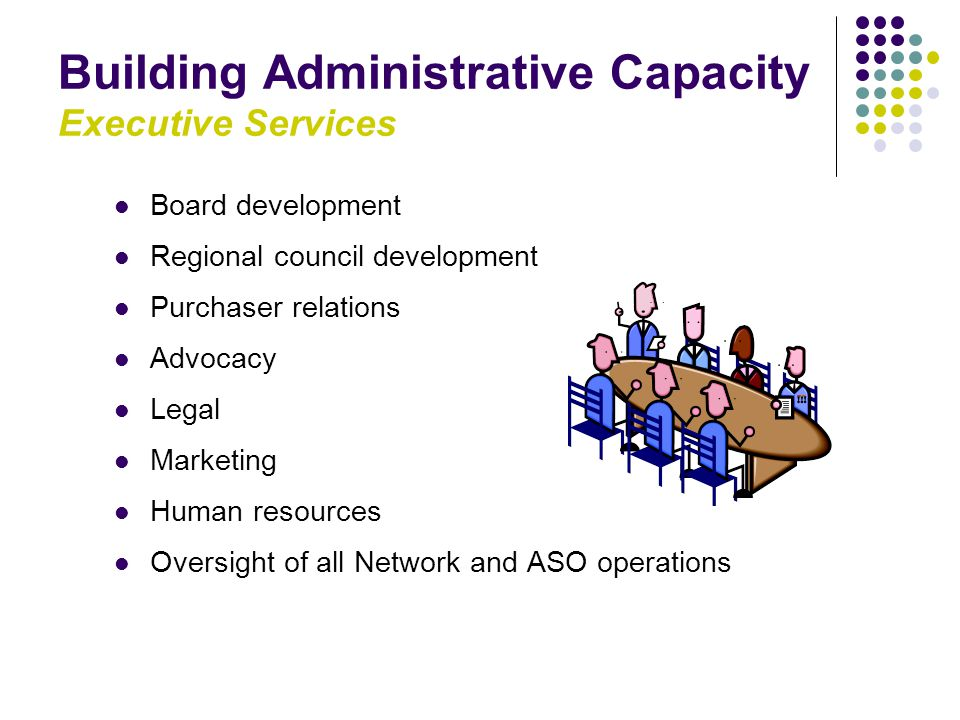 Building Administrative Capacity Executive Services