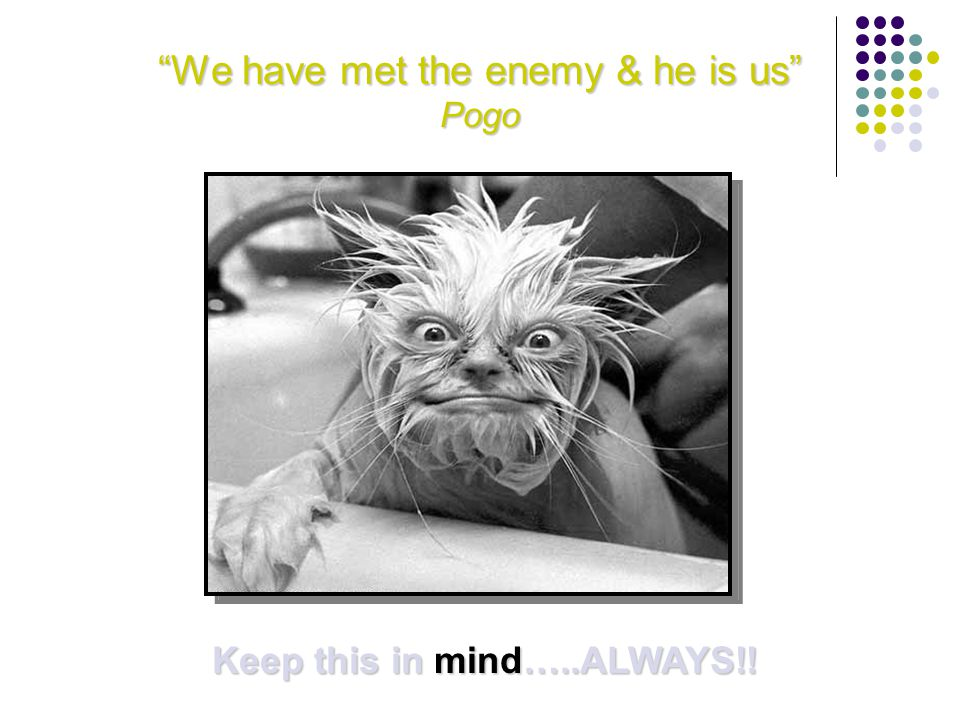 We have met the enemy & he is us Pogo