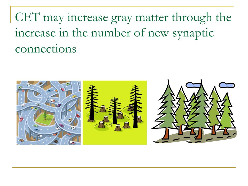 CET may increase gray matter through the increase in the number of new synaptic connections