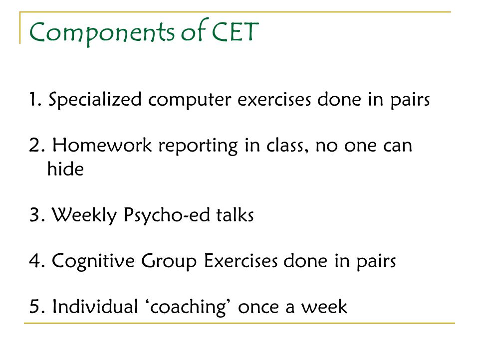 Components of CET 1. Specialized computer exercises done in pairs