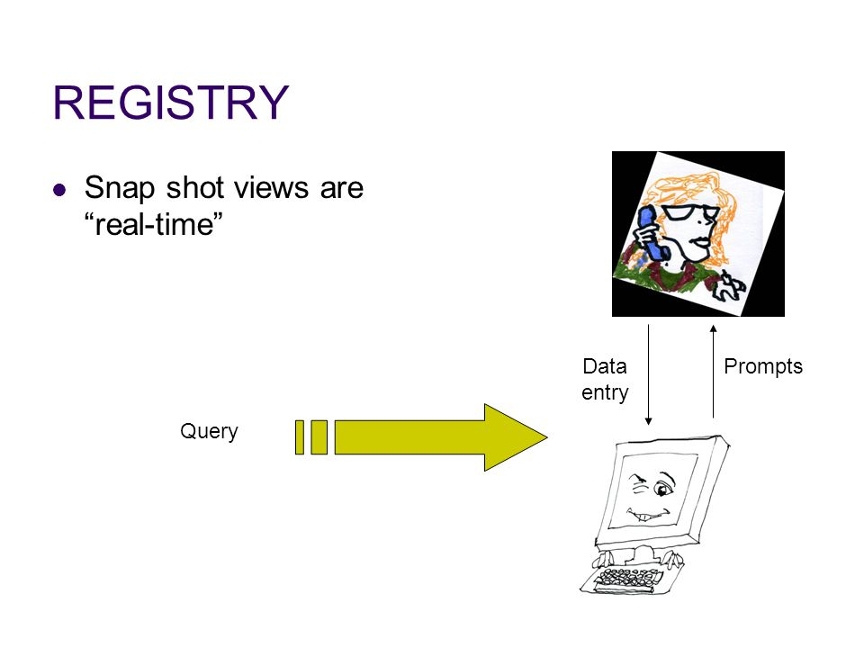 REGISTRY Snap shot views are real-time Data entry Prompts Query