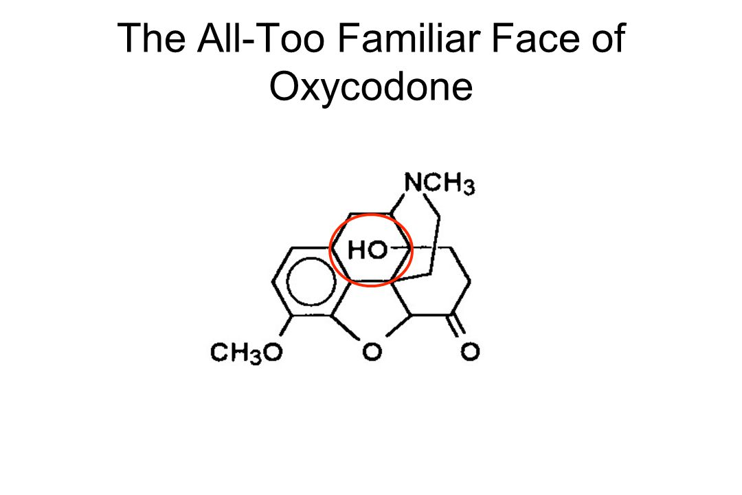 The All-Too Familiar Face of Oxycodone