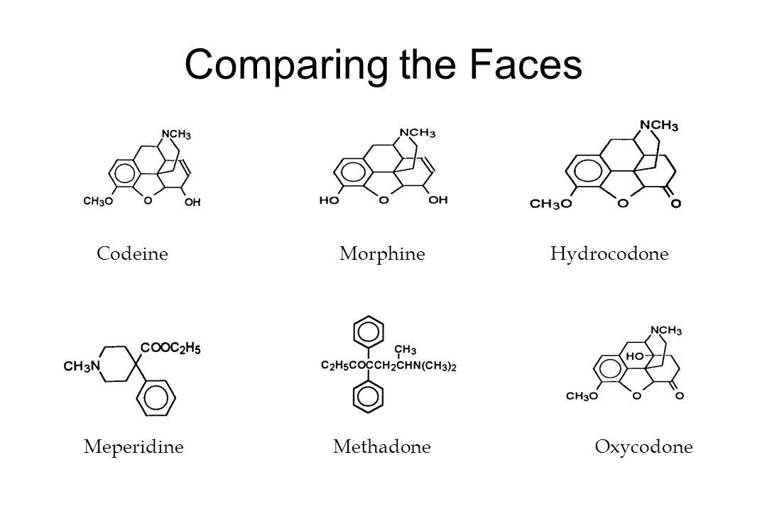 Comparing the Faces Codeine Morphine Hydrocodone Meperidine Methadone