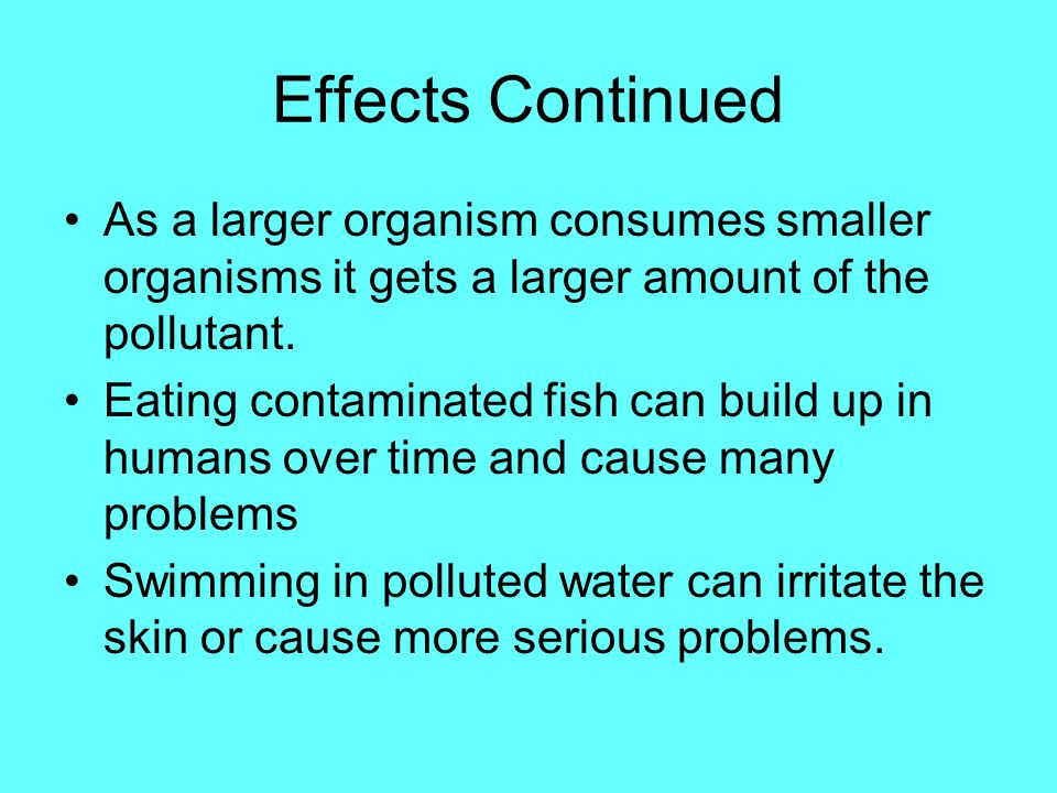 Effects Continued As a larger organism consumes smaller organisms it gets a larger amount of the pollutant.