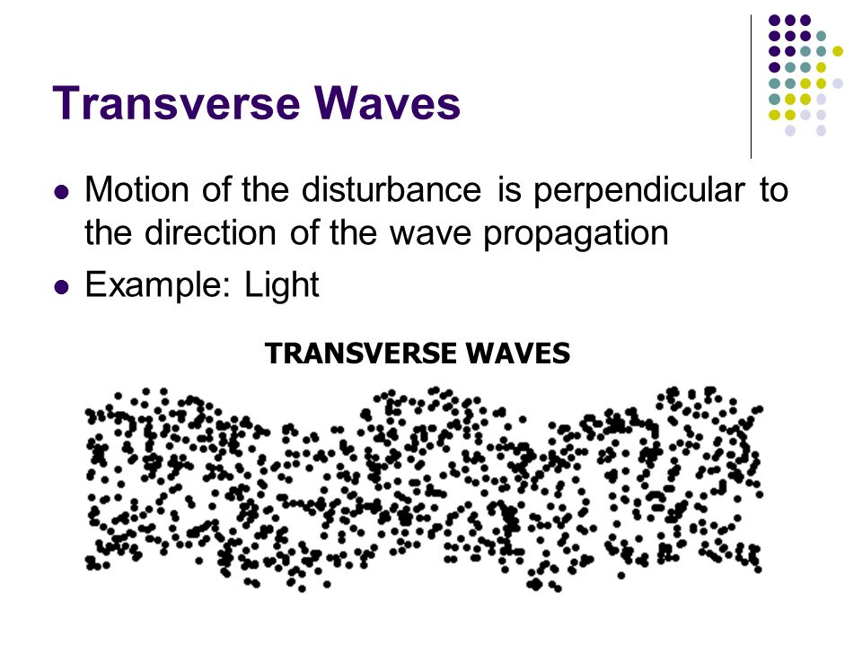 Transverse Waves Motion of the disturbance is perpendicular to the direction of the wave propagation.