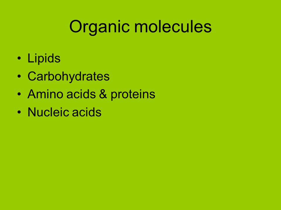 Organic molecules Lipids Carbohydrates Amino acids & proteins
