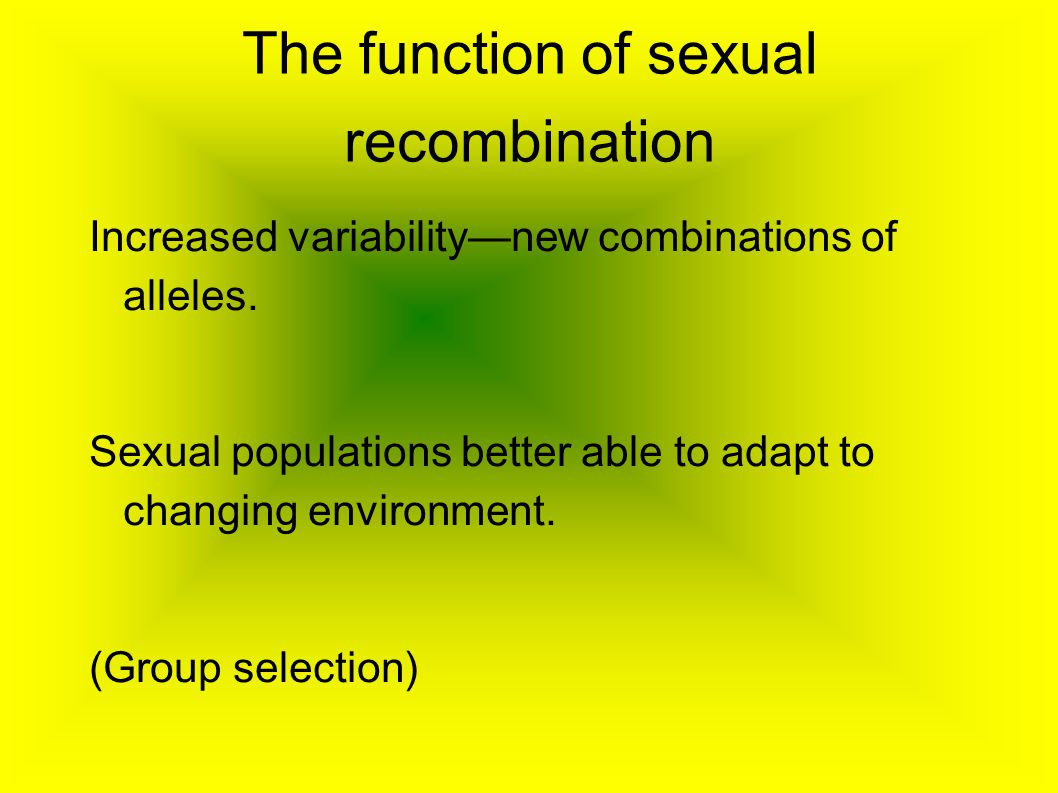 The function of sexual recombination