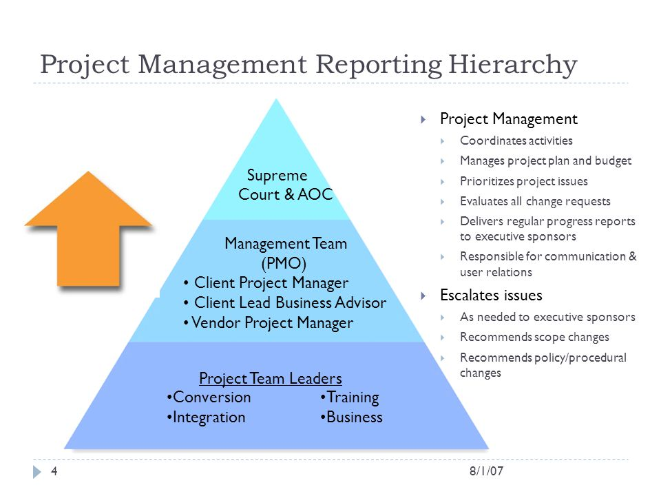 Project Management Reporting Hierarchy