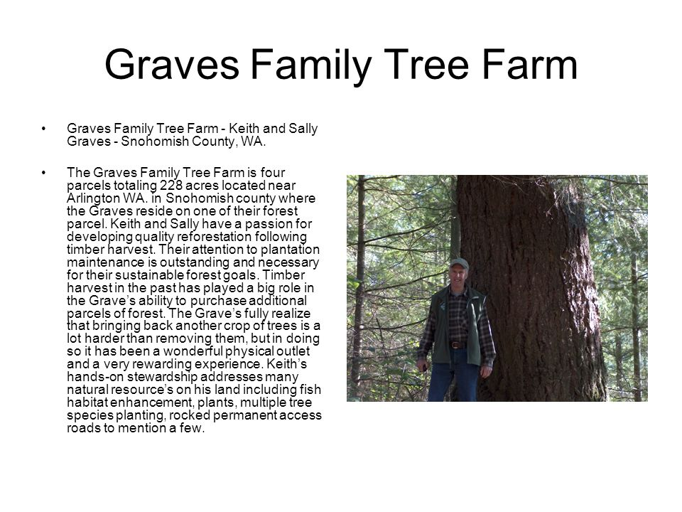Graves Family Tree Farm