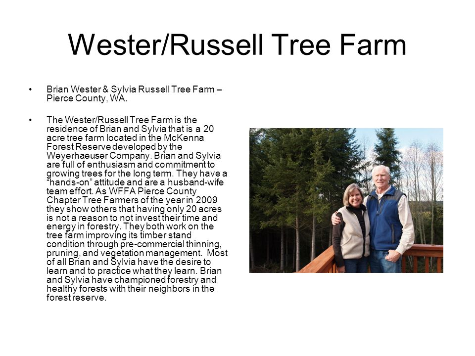 Wester/Russell Tree Farm