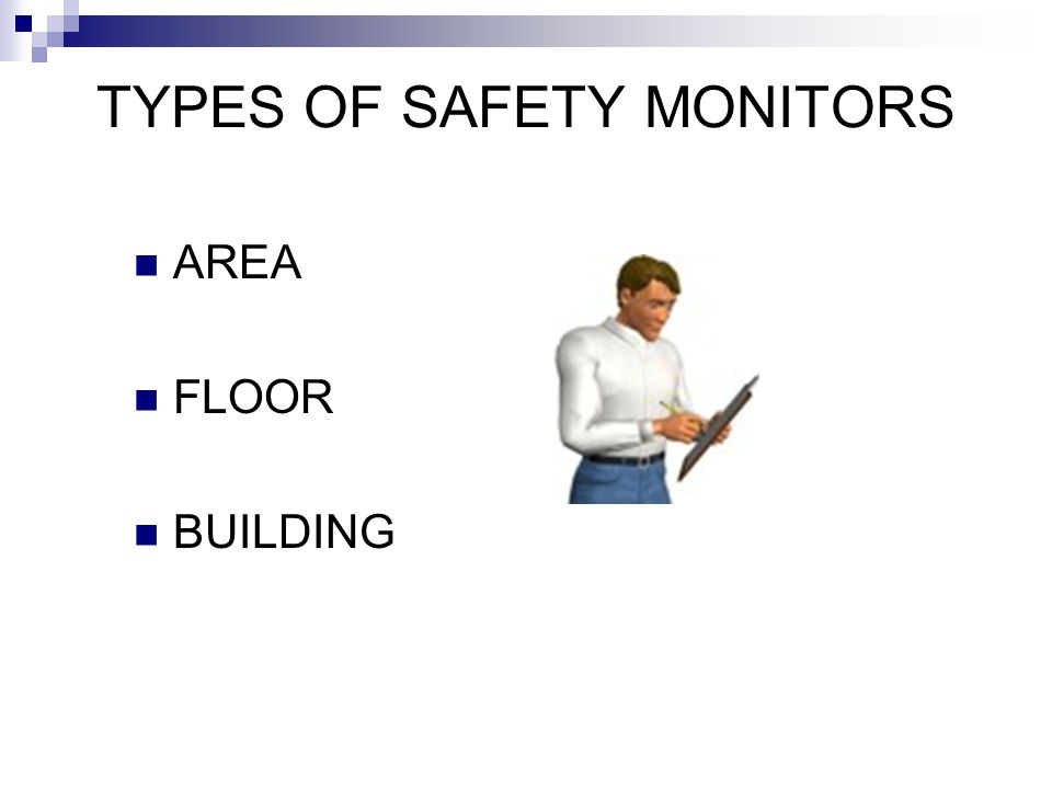 TYPES OF SAFETY MONITORS