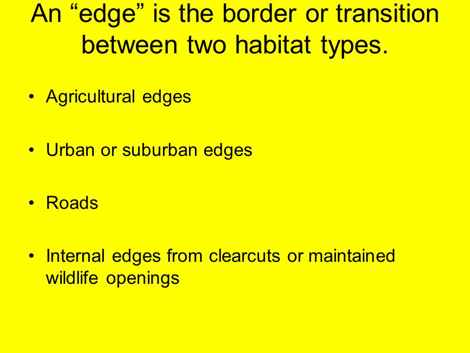 An edge is the border or transition between two habitat types.