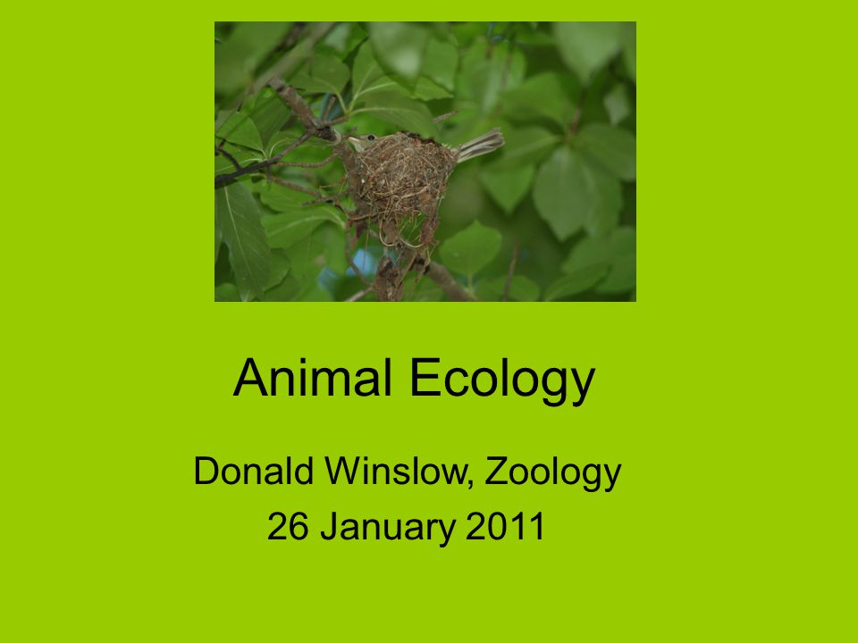 Donald Winslow, Zoology