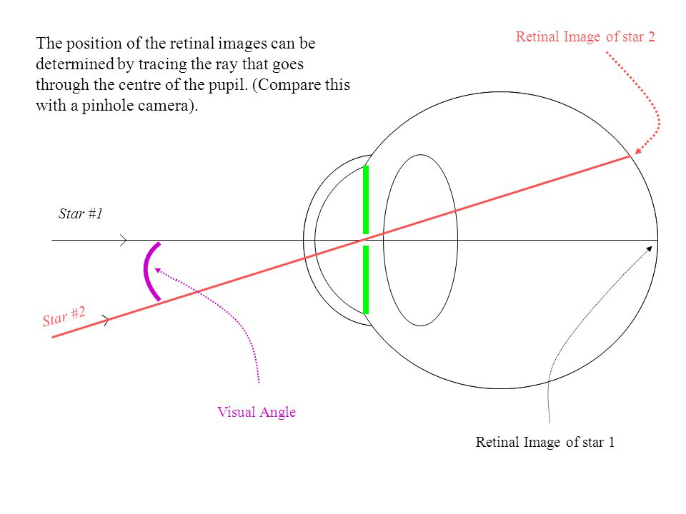 Retinal Image of star 2