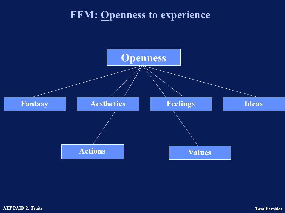 FFM: Openness to experience
