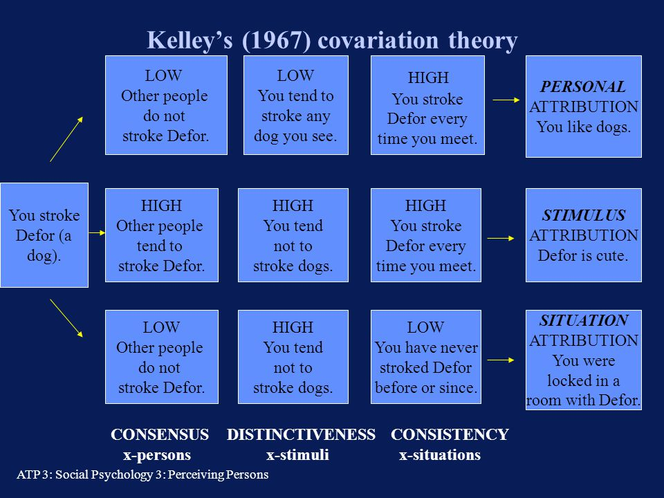 kelley s covariation model Start studying psych 2600 ch 4 - social perception what is a major assumption of kelley's covariation model of according to kelley's covariation.