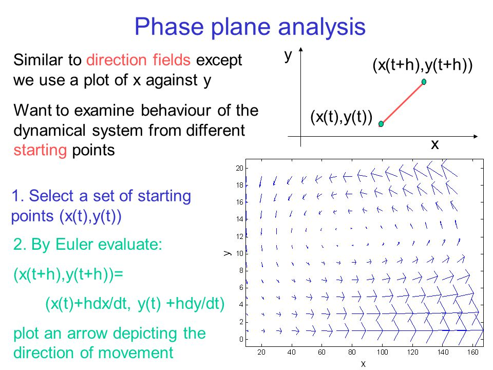 Phase plane analysis y. Similar to direction fields except we use a plot of x against y. (x(t+h),y(t+h))