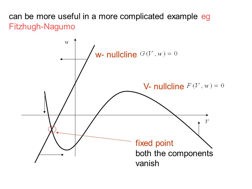 can be more useful in a more complicated example eg Fitzhugh-Nagumo