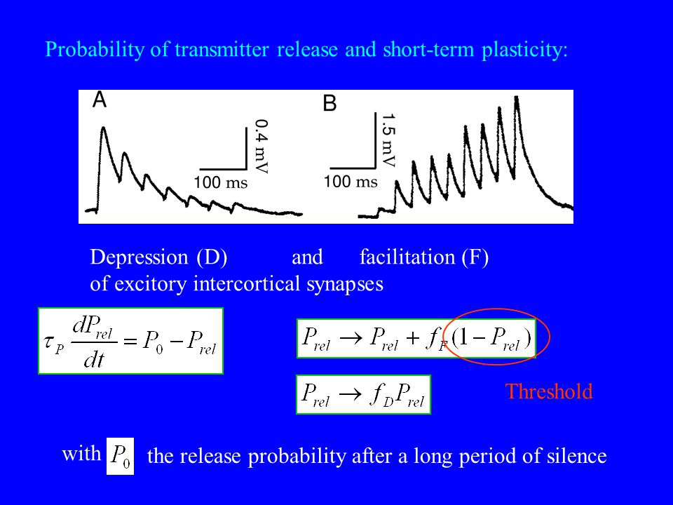 Probability of transmitter release and short-term plasticity: