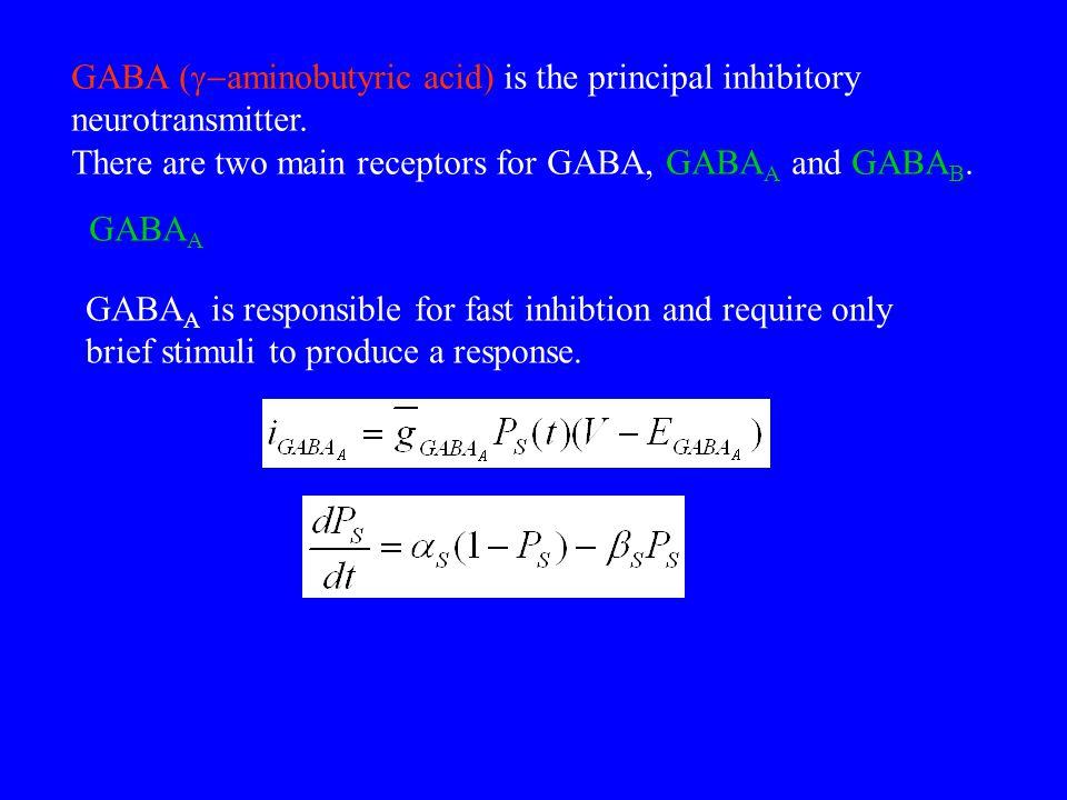 GABA (g-aminobutyric acid) is the principal inhibitory