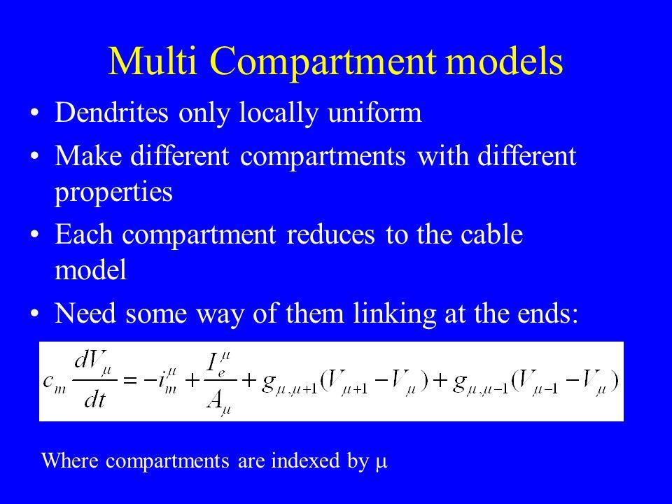 Multi Compartment models