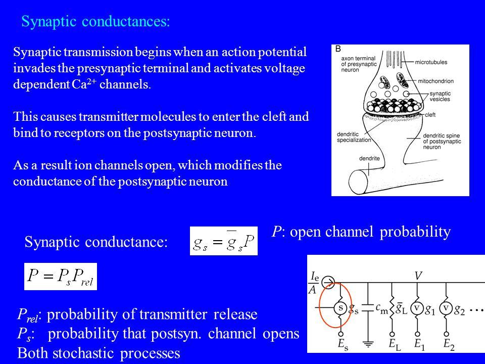 Synaptic conductances: