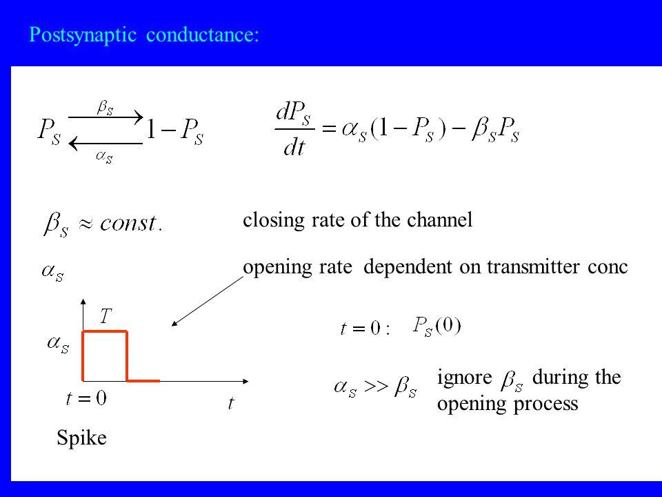Postsynaptic conductance: