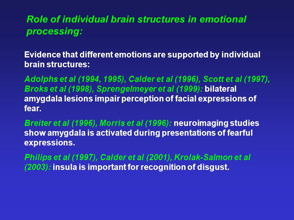 Role of individual brain structures in emotional processing: