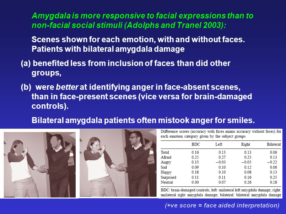 (a) benefited less from inclusion of faces than did other groups,