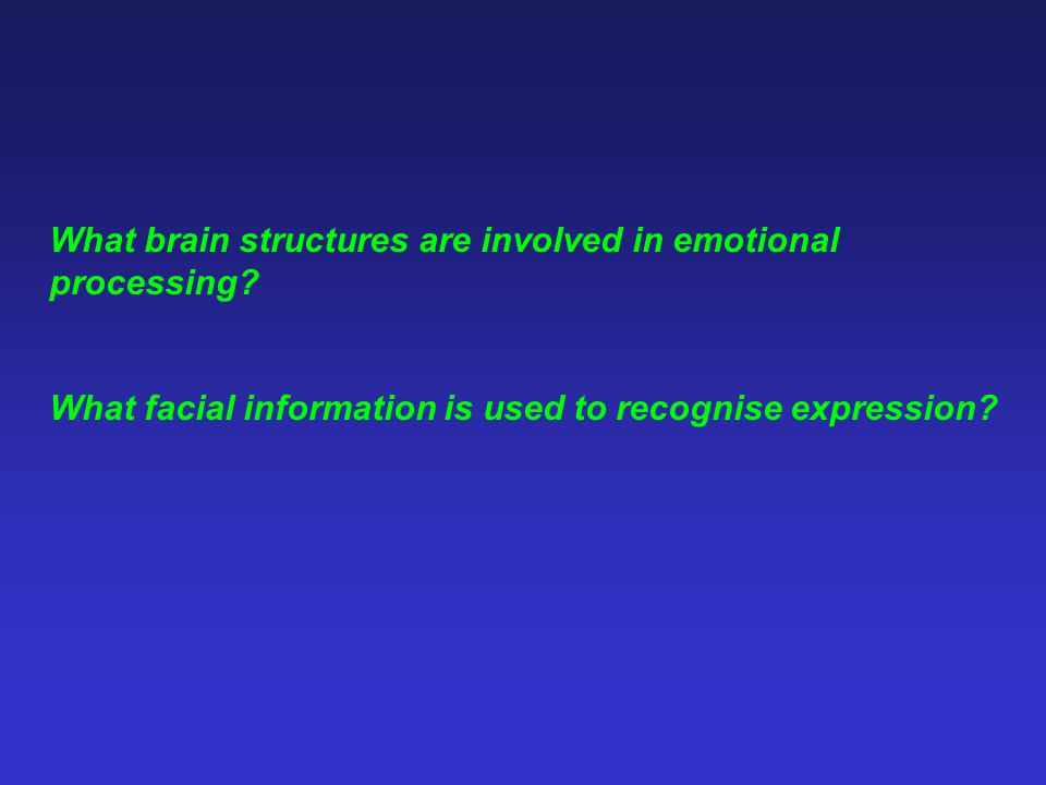 What brain structures are involved in emotional processing