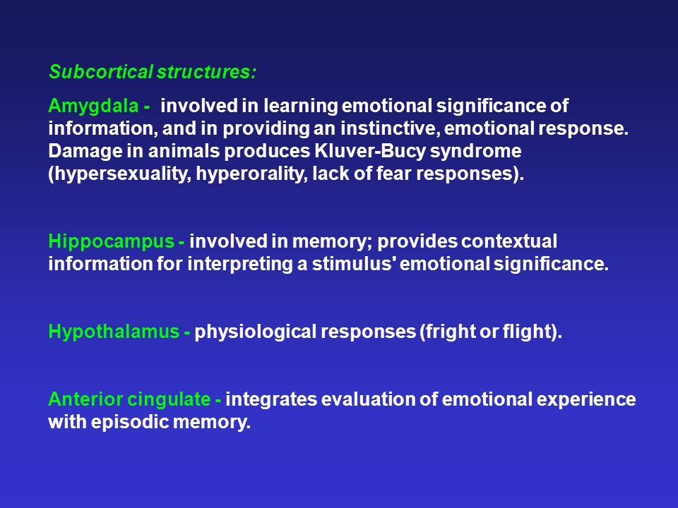 Subcortical structures: