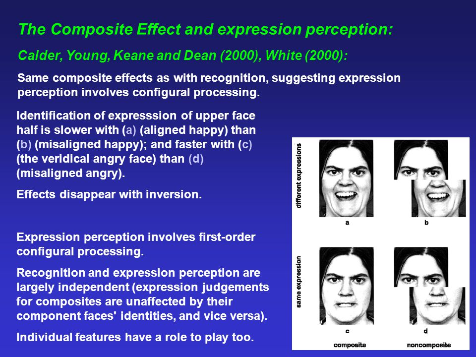 The Composite Effect and expression perception: