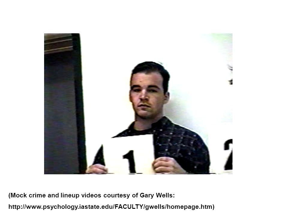 (Mock crime and lineup videos courtesy of Gary Wells: