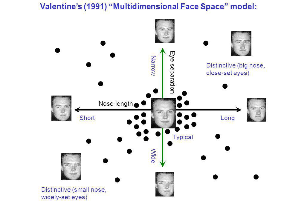 Valentine's (1991) Multidimensional Face Space model: