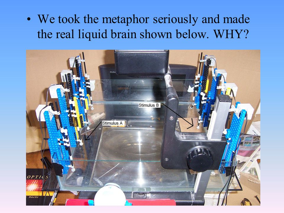 We took the metaphor seriously and made the real liquid brain shown below. WHY
