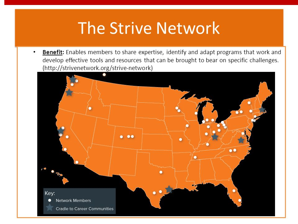 The Strive Network