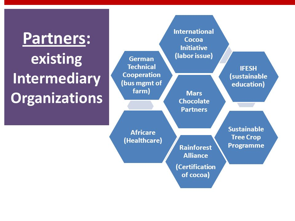 Partners: existing Intermediary Organizations