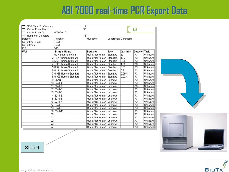 ABI 7000 real-time PCR Export Data